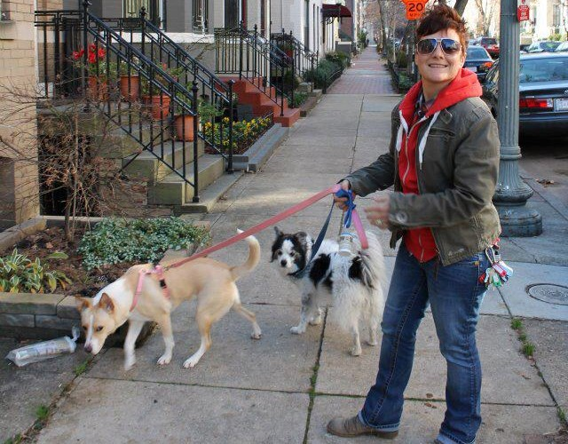 Dog Walker Hiring Dupont Shaw Columbia Heights Logan Circle